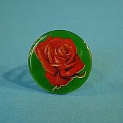 Rose on green